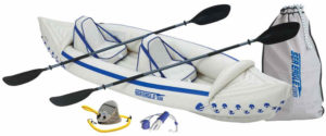 Sea Eagle SE330 professional