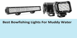 best bowfishing lights for muddy water