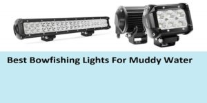 Top 8 Best Bowfishing Lights For Muddy Water In 2019