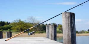 Best Spinning Rods Under $50