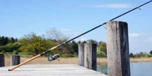 Best Spinning Rods Under $50