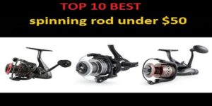 Best Spinning Rods Under $50 – Our Top 10 Picks In 2019