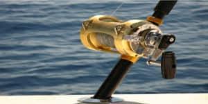 best saltwater spinning reel under 100 dollars