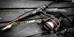 best shimano reel reviews