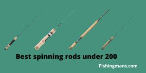 Best spinning rods under 200